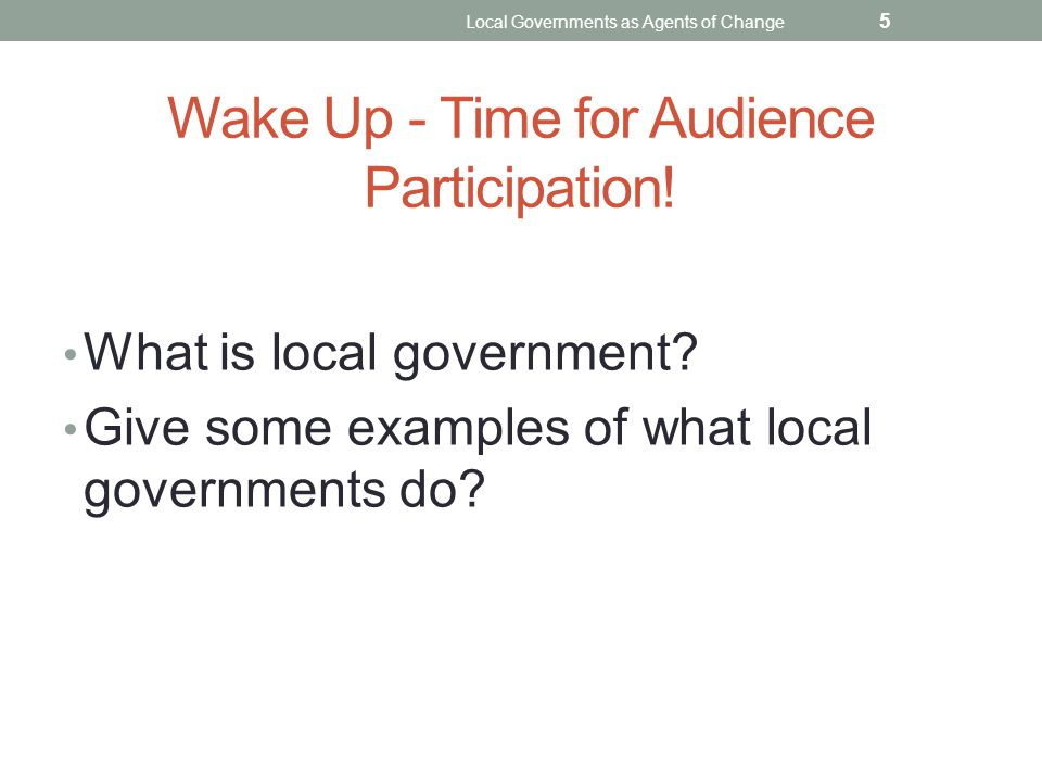 Wake Up - Time for Audience Participation! What is local government? Give some examples of what local governments do? Local Governments as Agents of C