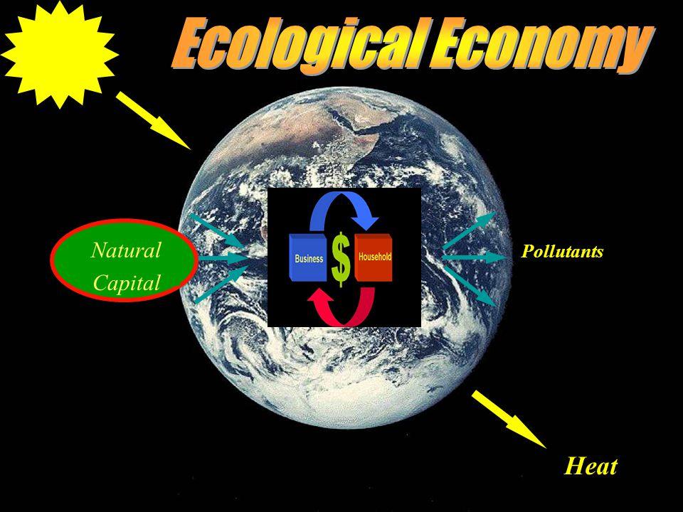 Heat Natural Capital Pollutants Natural Capital