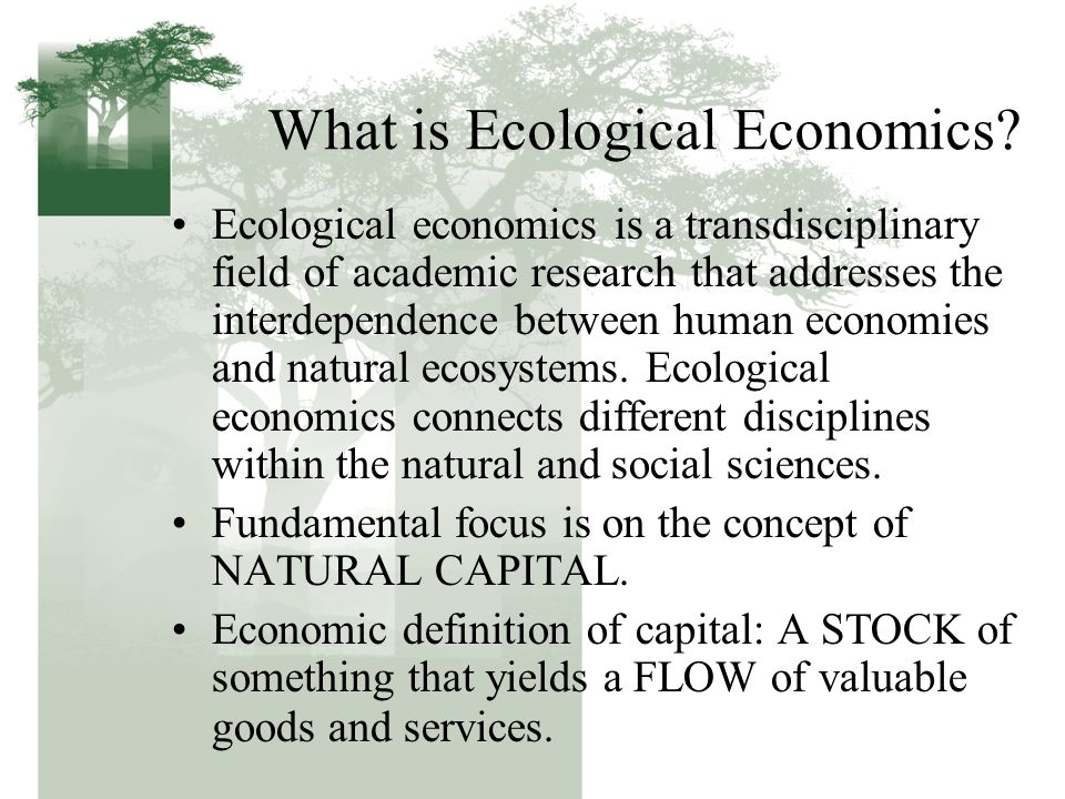 What is Ecological Economics.