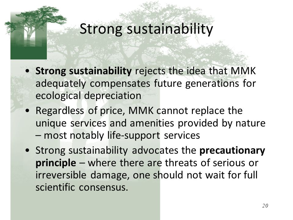 20 Strong sustainability Strong sustainability rejects the idea that MMK adequately compensates future generations for ecological depreciation Regardless of price, MMK cannot replace the unique services and amenities provided by nature – most notably life-support services Strong sustainability advocates the precautionary principle – where there are threats of serious or irreversible damage, one should not wait for full scientific consensus.