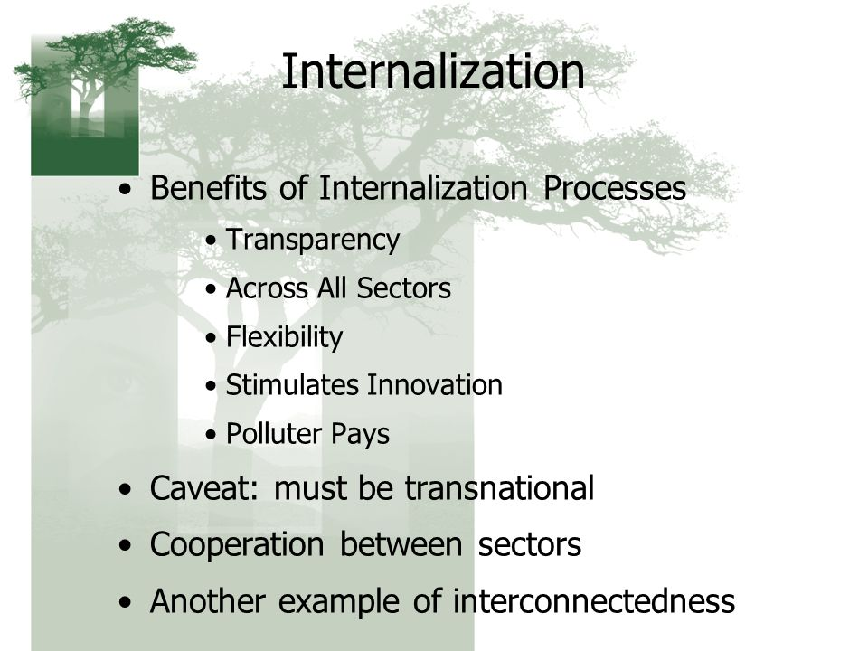 Internalization Benefits of Internalization Processes Transparency Across All Sectors Flexibility Stimulates Innovation Polluter Pays Caveat: must be transnational Cooperation between sectors Another example of interconnectedness