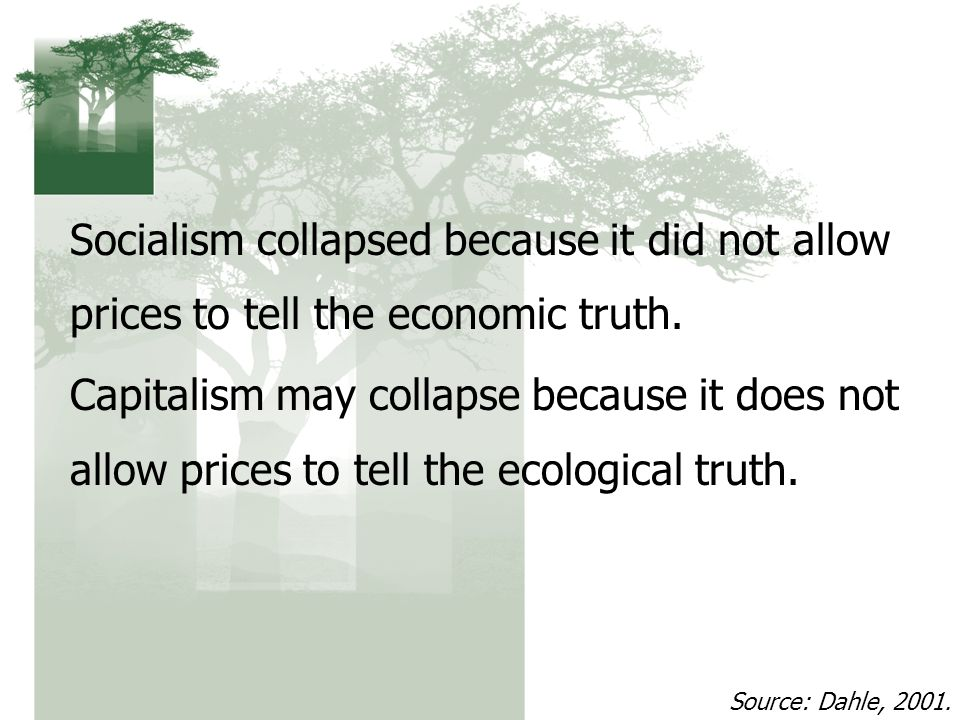Socialism collapsed because it did not allow prices to tell the economic truth.