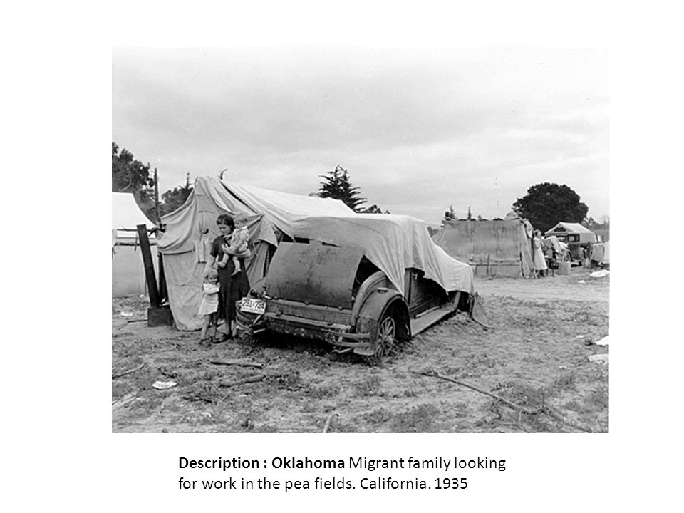 Description : Oklahoma Migrant family looking for work in the pea fields. California. 1935