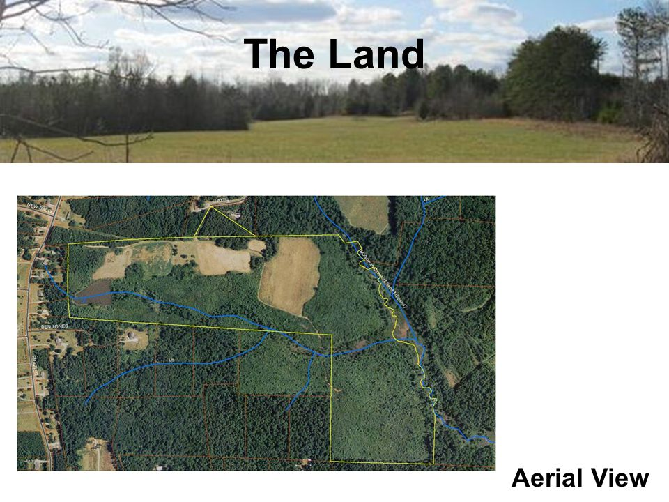 The Land Aerial View
