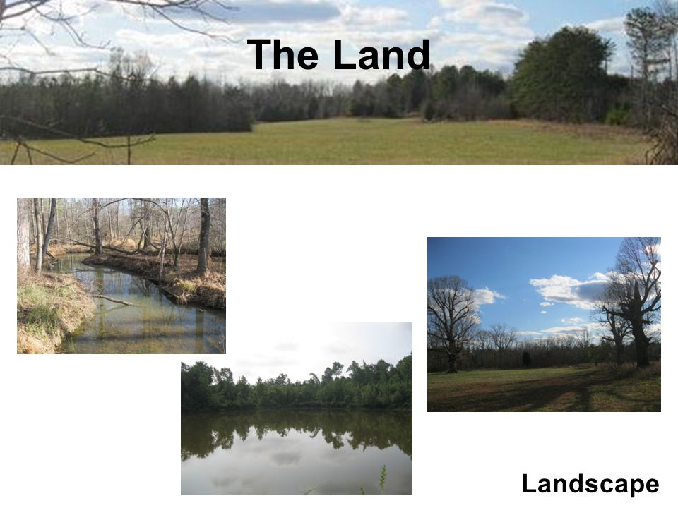 The Land Characteristics Excellent soils for agriculture and septic Large area of gentle south-facing slopes Bounded on two sides by perennial streams Pond (approx.