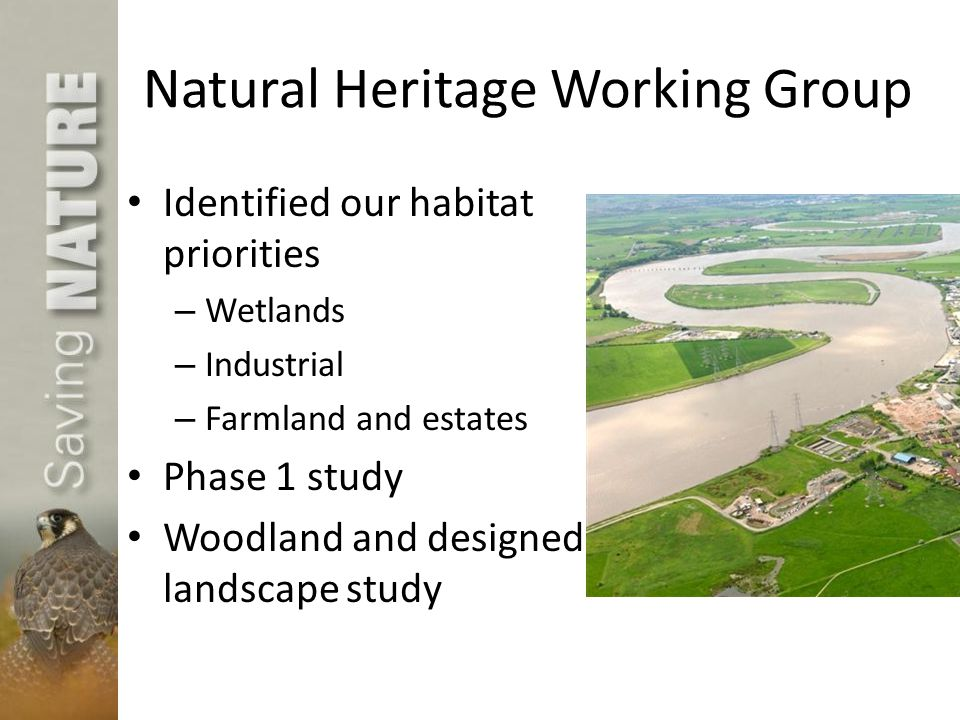 Natural Heritage Working Group Identified our habitat priorities – Wetlands – Industrial – Farmland and estates Phase 1 study Woodland and designed landscape study
