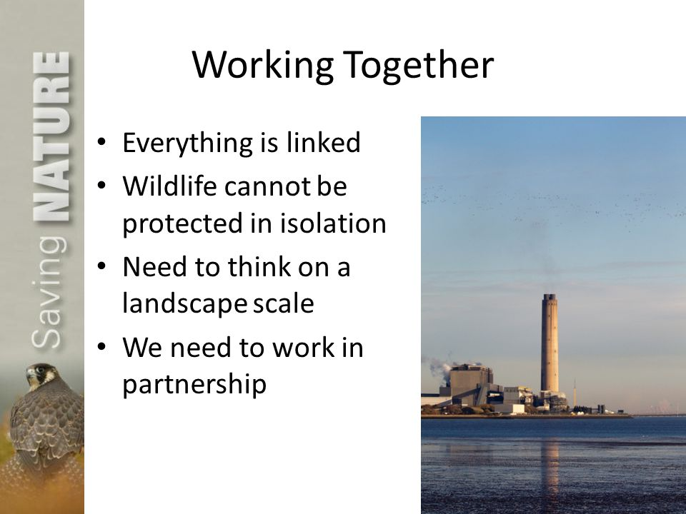 Working Together Everything is linked Wildlife cannot be protected in isolation Need to think on a landscape scale We need to work in partnership
