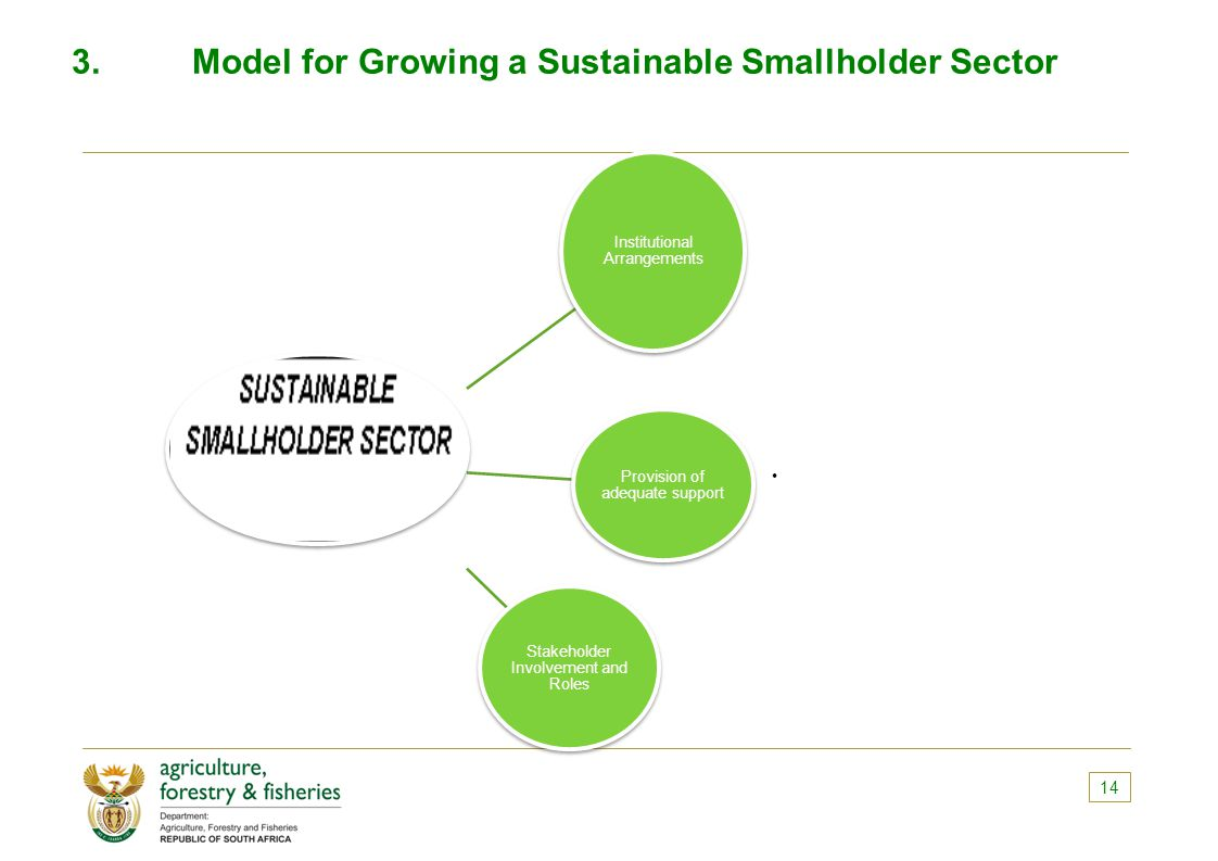 3.Model for Growing a Sustainable Smallholder Sector 14 Institutional Arrangements Provision of adequate support Stakeholder Involvement and Roles