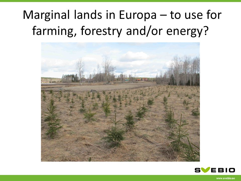 www.svebio.se Marginal lands in Europa – to use for farming, forestry and/or energy