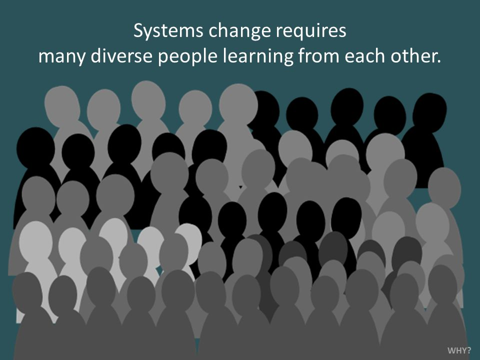 Systems change requires many diverse people learning from each other. WHY?