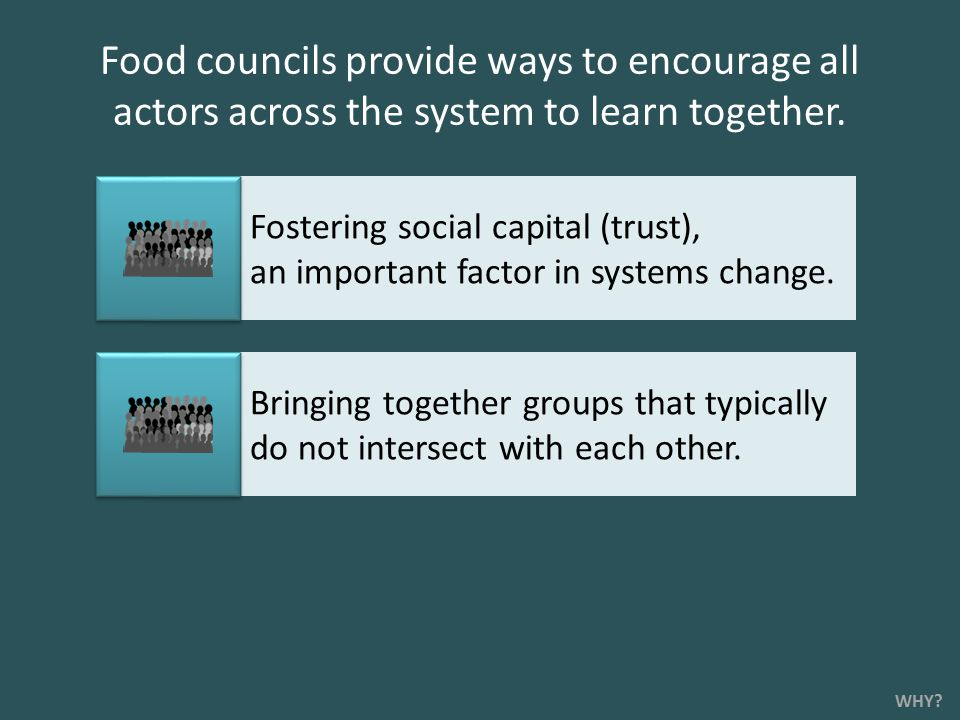 Food councils provide ways to encourage all actors across the system to learn together.
