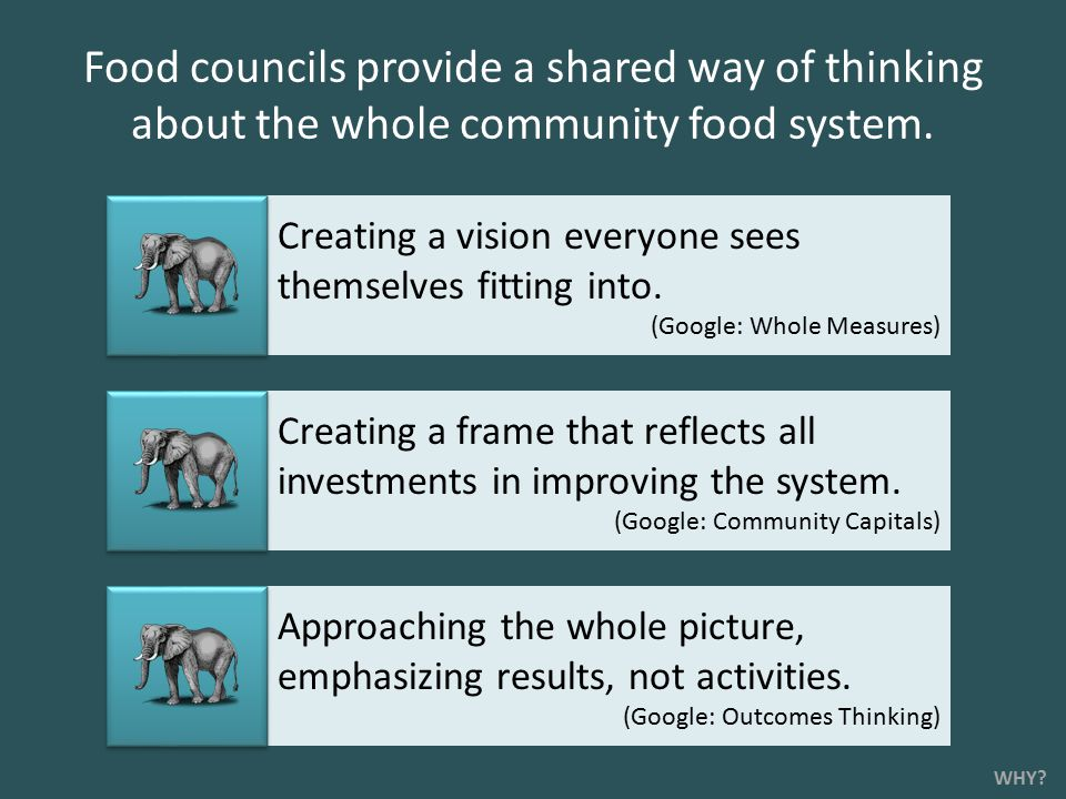 Food councils provide a shared way of thinking about the whole community food system.