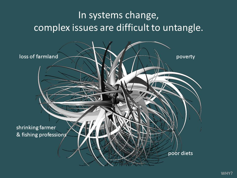 poverty shrinking farmer & fishing professions loss of farmland poor diets In systems change, complex issues are difficult to untangle.