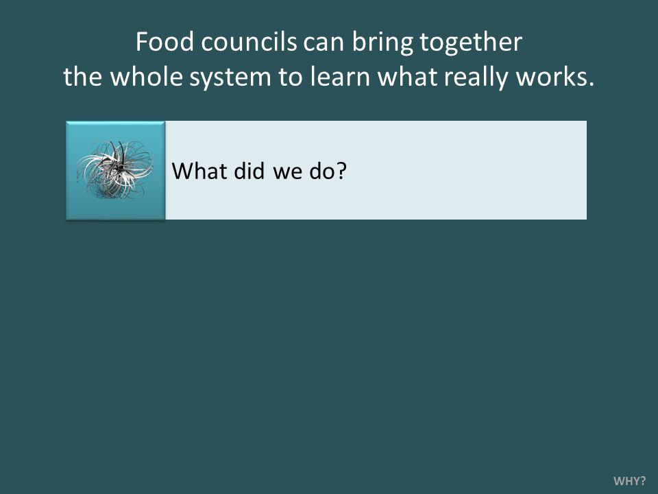 Food councils can bring together the whole system to learn what really works. WHY? What did we do?