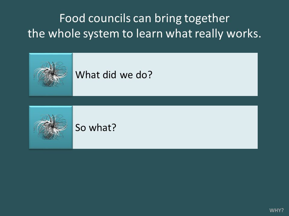 Food councils can bring together the whole system to learn what really works.