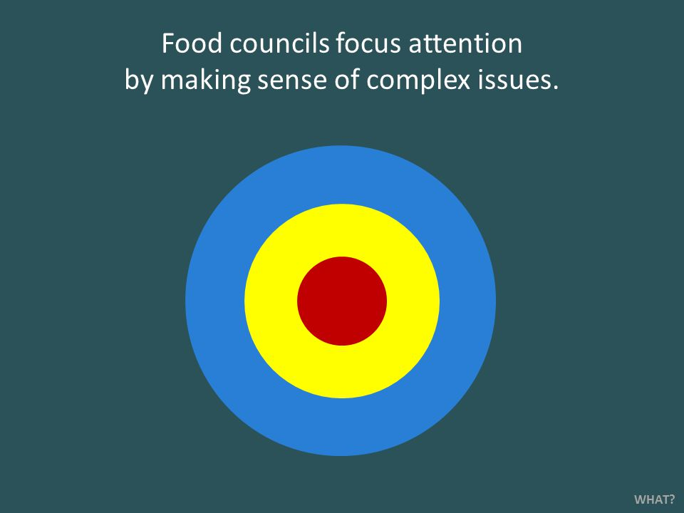Food councils focus attention by making sense of complex issues. WHAT?
