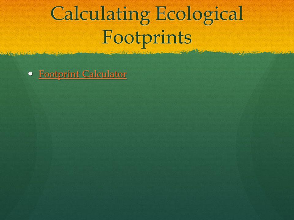 Calculating Ecological Footprints Footprint Calculator Footprint Calculator Footprint Calculator Footprint Calculator