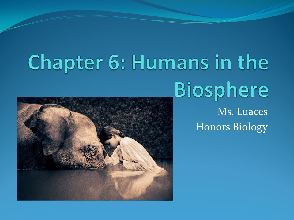 Ms. Luaces Honors Biology