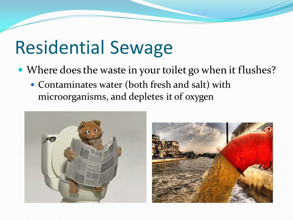 Residential Sewage Where does the waste in your toilet go when it flushes? Contaminates water (both fresh and salt) with microorganisms, and depletes