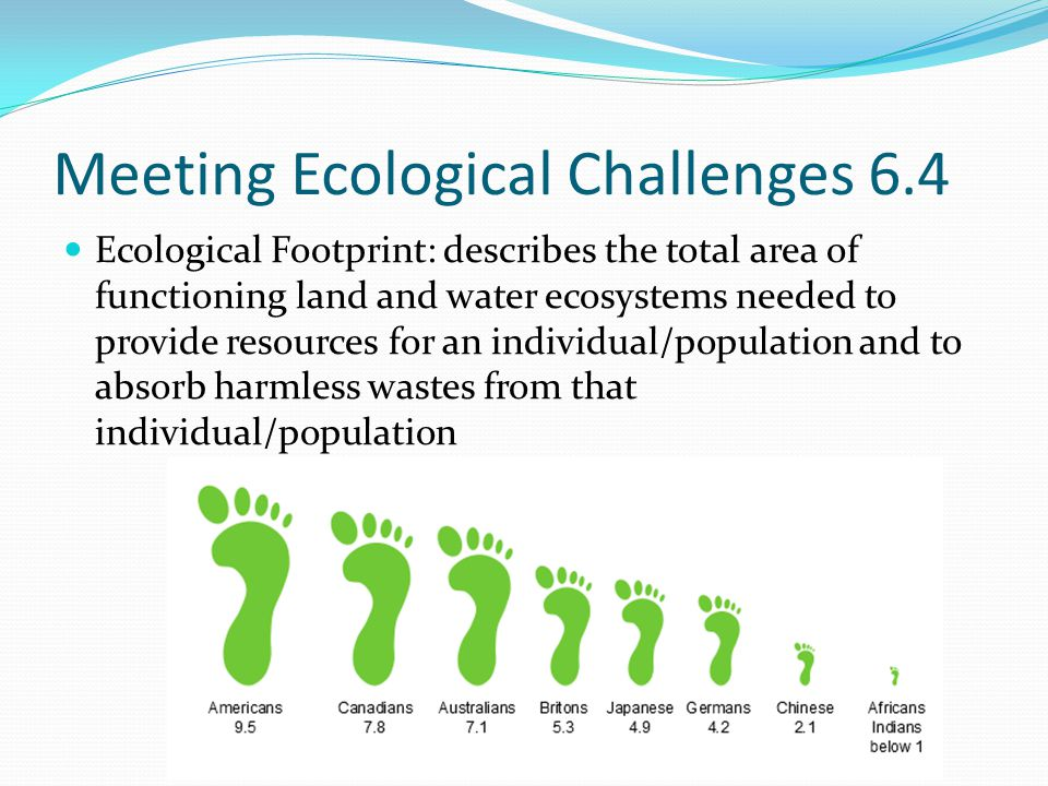 Meeting Ecological Challenges Ecological footprints help us determine what the carrying capacity is for humans and our own impact on the world No exact way to calculate it It is estimated that Americans footprints are four times larger than the global average – we use too much!!
