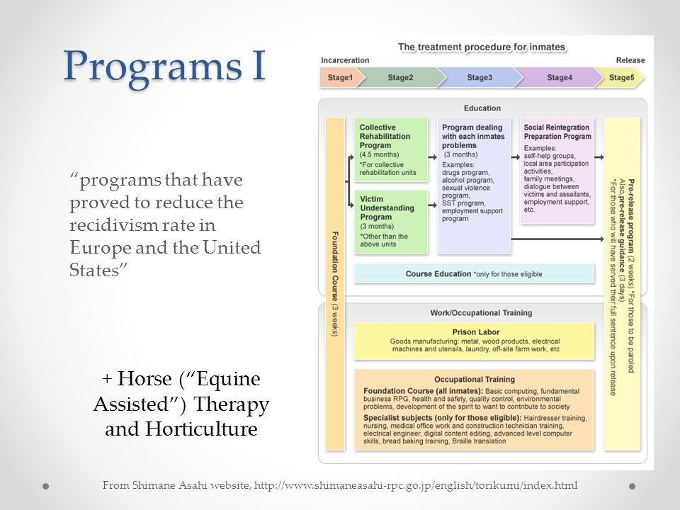 Programs I From Shimane Asahi website, http://www.shimaneasahi-rpc.go.jp/english/torikumi/index.html programs that have proved to reduce the recidivism rate in Europe and the United States + Horse ( Equine Assisted ) Therapy and Horticulture