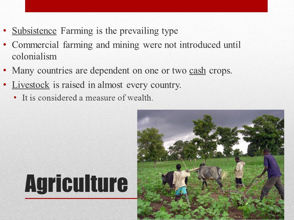 Agriculture Subsistence Farming is the prevailing type Commercial farming and mining were not introduced until colonialism Many countries are dependent on one or two cash crops.