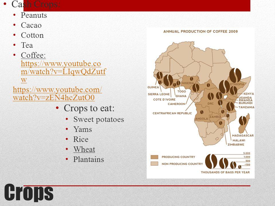 Crops Cash Crops: Peanuts Cacao Cotton Tea Coffee: https://www.youtube.co m/watch v=LIqwQdZutf w https://www.youtube.co m/watch v=LIqwQdZutf w https://www.youtube.com/ watch v=zEN4hcZutO0 Crops to eat: Sweet potatoes Yams Rice Wheat Plantains