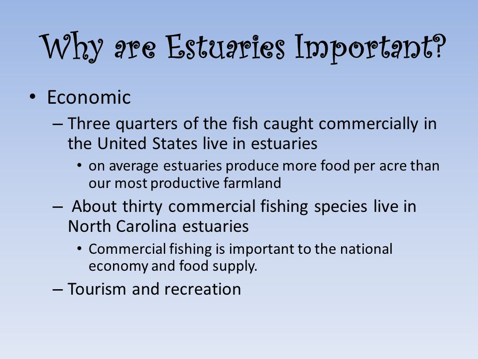 Why are Estuaries Important.