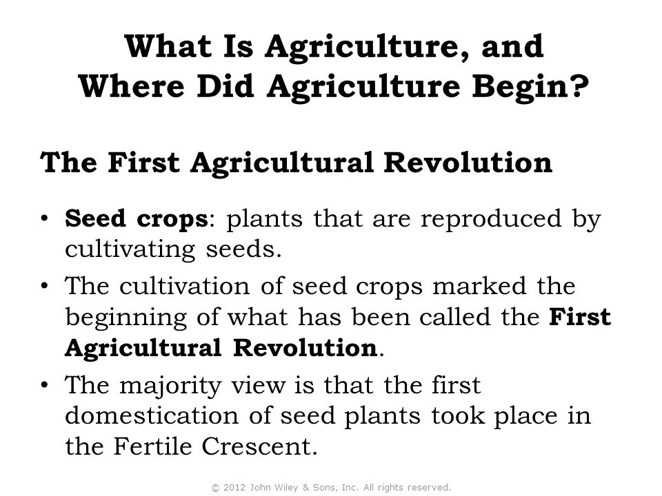Seed crops : plants that are reproduced by cultivating seeds. The cultivation of seed crops marked the beginning of what has been called the First Agr