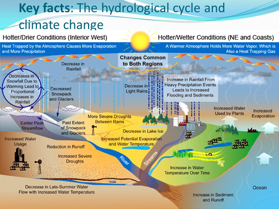 Key facts: The hydrological cycle and climate change