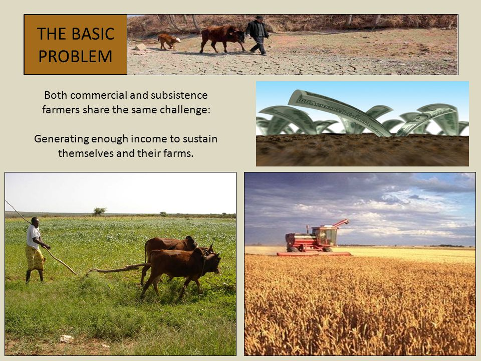 THE BASIC PROBLEM Both commercial and subsistence farmers share the same challenge: Generating enough income to sustain themselves and their farms.
