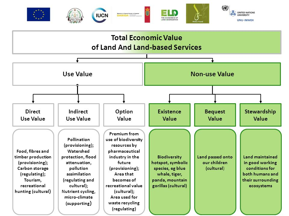 Total Economic Value of Land And Land-based Services Use ValueNon-use Value Direct Use Value Indirect Use Value Stewardship Value Bequest Value Existence Value Option Value Food, fibres and timber production (provisioning); Carbon storage (regulating); Tourism, recreational hunting (cultural ) Pollination (provisioning); Watershed protection, flood attenuation, pollution assimilation (regulating and cultural); Nutrient cycling, micro-climate (supporting ) Premium from use of biodiversity resources by pharmaceutical industry in the future (provisioning); Area that becomes of recreational value (cultural); Area used for waste recycling (regulating) Biodiversity hotspot, symbolic species, eg blue whale, tiger, panda, mountain gorillas (cultural) Land passed onto our children (cultural) Land maintained in good working conditions for both humans and their surrounding ecosystems