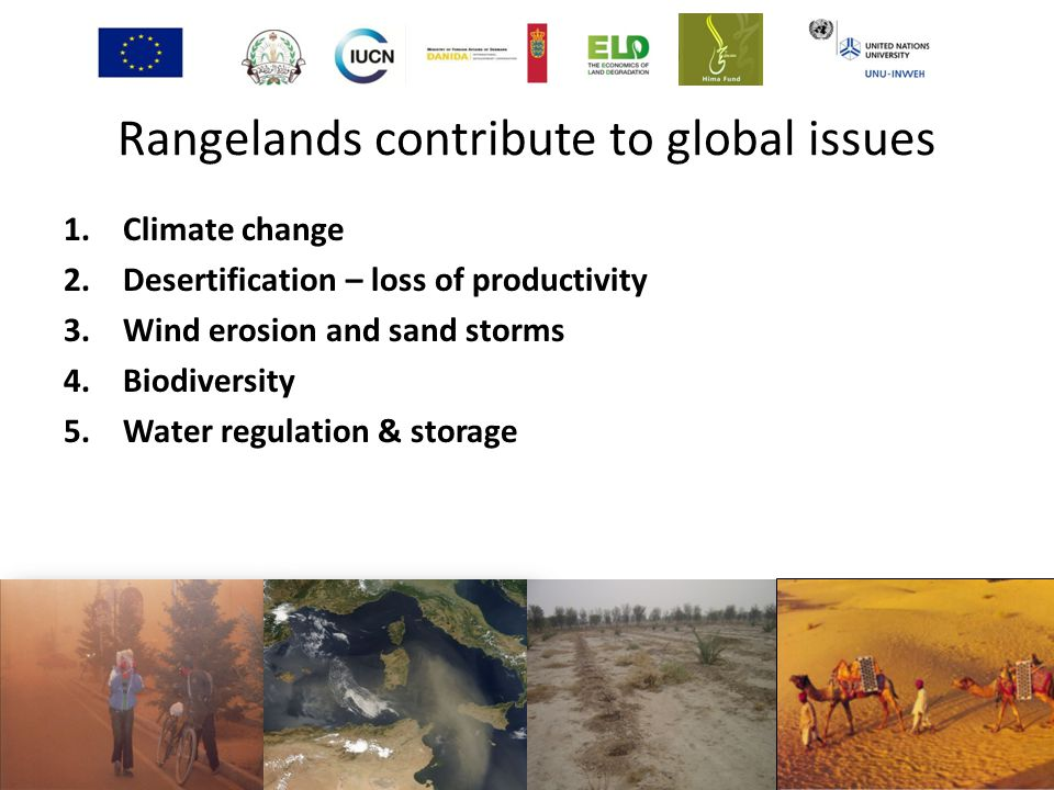 Rangelands contribute to global issues 1.Climate change 2.Desertification – loss of productivity 3.Wind erosion and sand storms 4.Biodiversity 5.Water regulation & storage