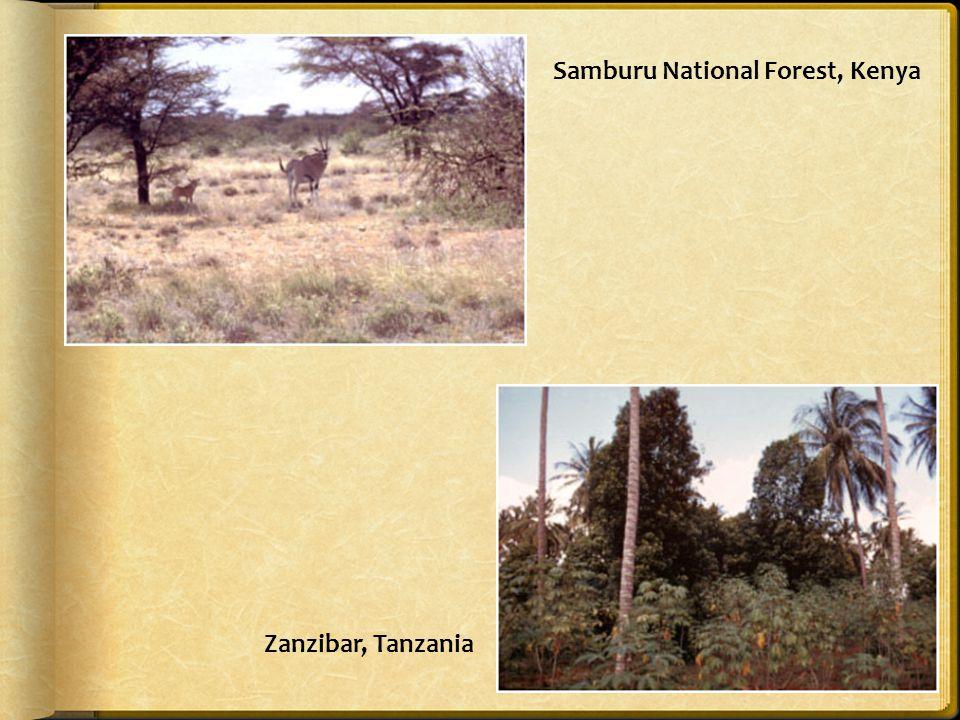 Samburu National Forest, Kenya Zanzibar, Tanzania
