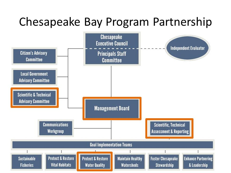 Chesapeake Bay Program Partnership 19