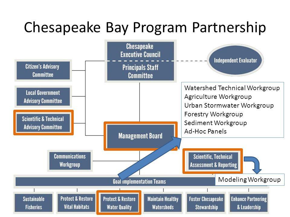Chesapeake Bay Program Partnership 20 Watershed Technical Workgroup Agriculture Workgroup Urban Stormwater Workgroup Forestry Workgroup Sediment Workgroup Ad-Hoc Panels Modeling Workgroup