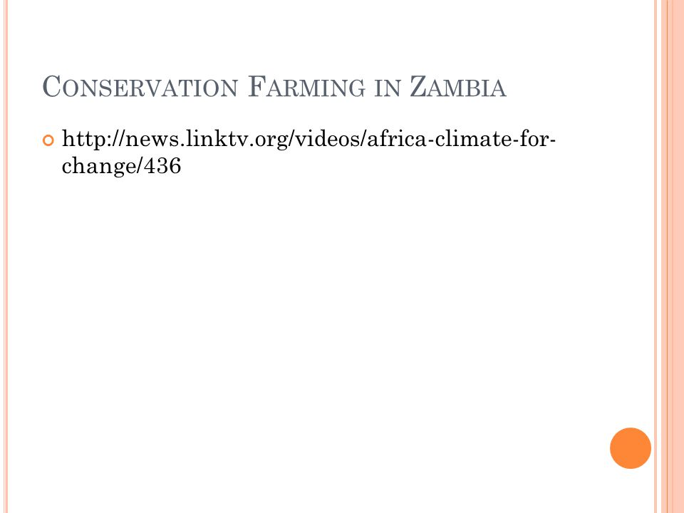 C ONSERVATION F ARMING IN Z AMBIA http://news.linktv.org/videos/africa-climate-for- change/436