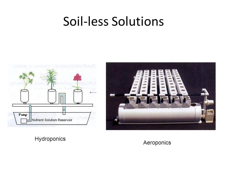 Soil-less Solutions Hydroponics Aeroponics
