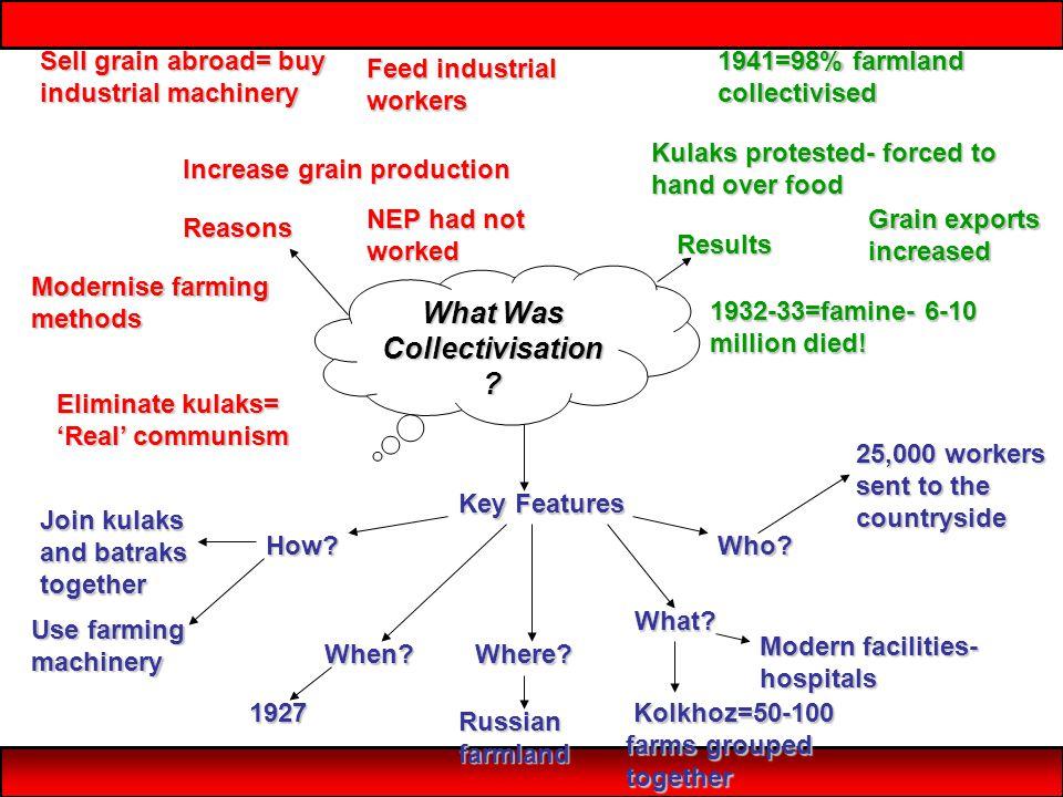 What Was Collectivisation .