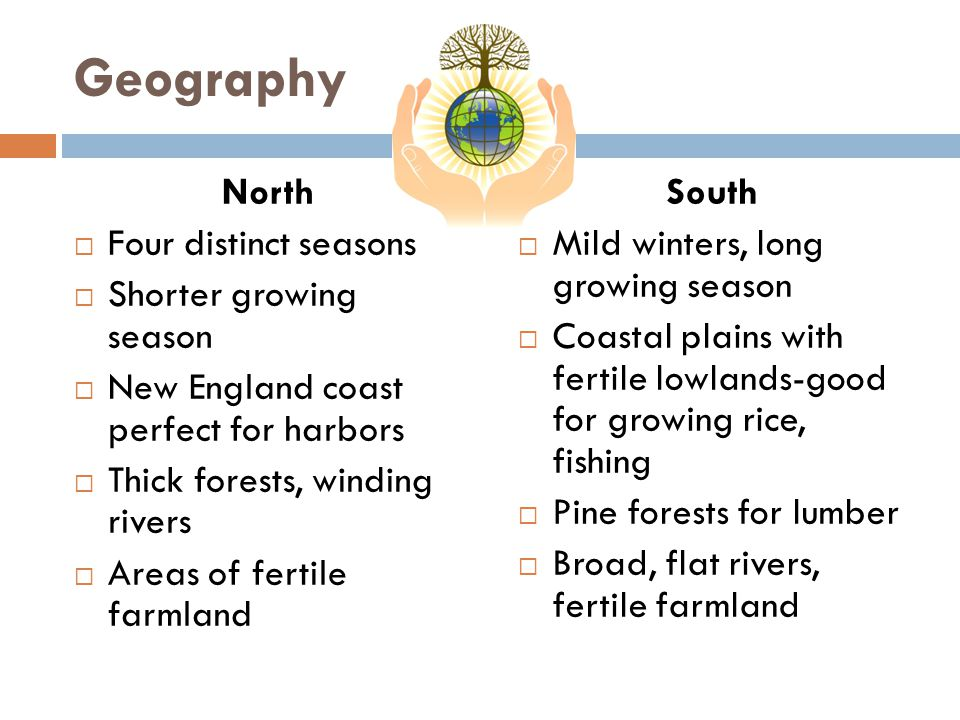 Geography North  Four distinct seasons  Shorter growing season  New England coast perfect for harbors  Thick forests, winding rivers  Areas of fertile farmland South  Mild winters, long growing season  Coastal plains with fertile lowlands-good for growing rice, fishing  Pine forests for lumber  Broad, flat rivers, fertile farmland