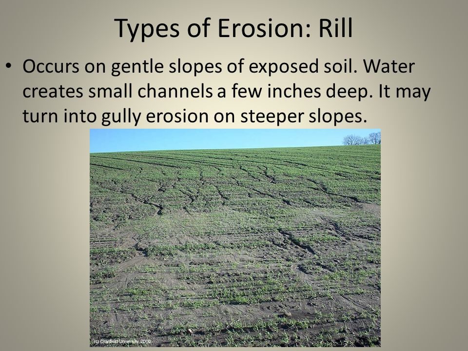 Types of Erosion: Rill Occurs on gentle slopes of exposed soil.