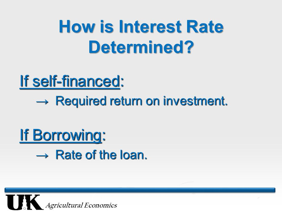 Agricultural Economics How is Interest Rate Determined.