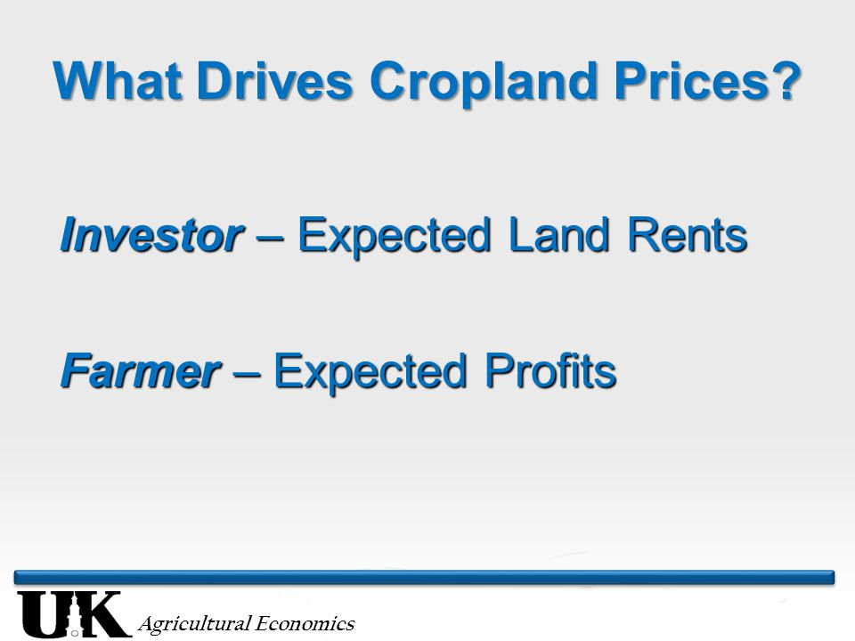 Agricultural Economics What Drives Cropland Prices.