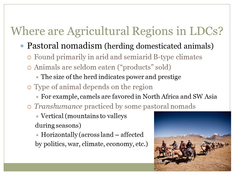 Where are Agricultural Regions in LDCs? Pastoral nomadism (herding domesticated animals)  Found primarily in arid and semiarid B-type climates  Anim