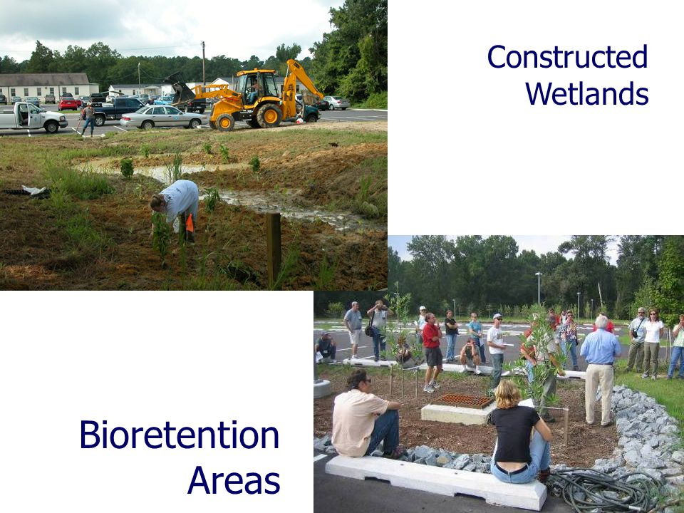 Constructed Wetlands Bioretention Areas