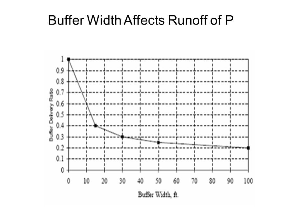 Buffer Width Affects Runoff of P