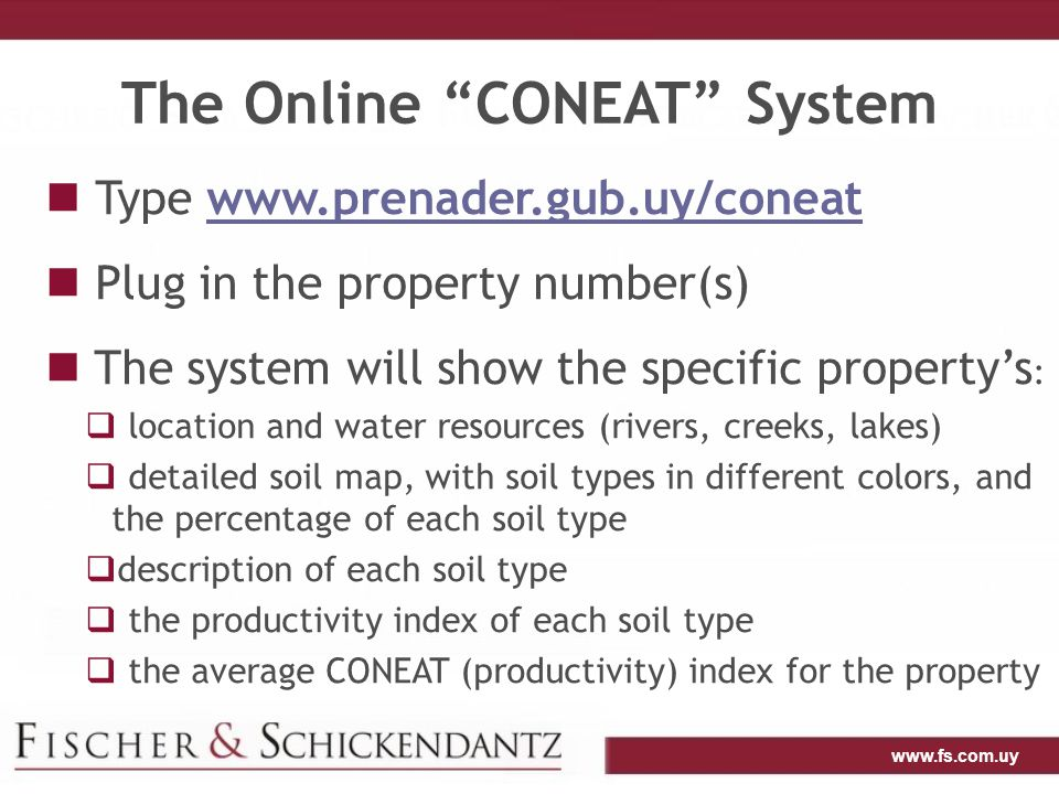 www.fs.com.uy The Online CONEAT System: Example Map of the property, with different soil types Location of the property Average CONEAT index for the property Property number Water resources