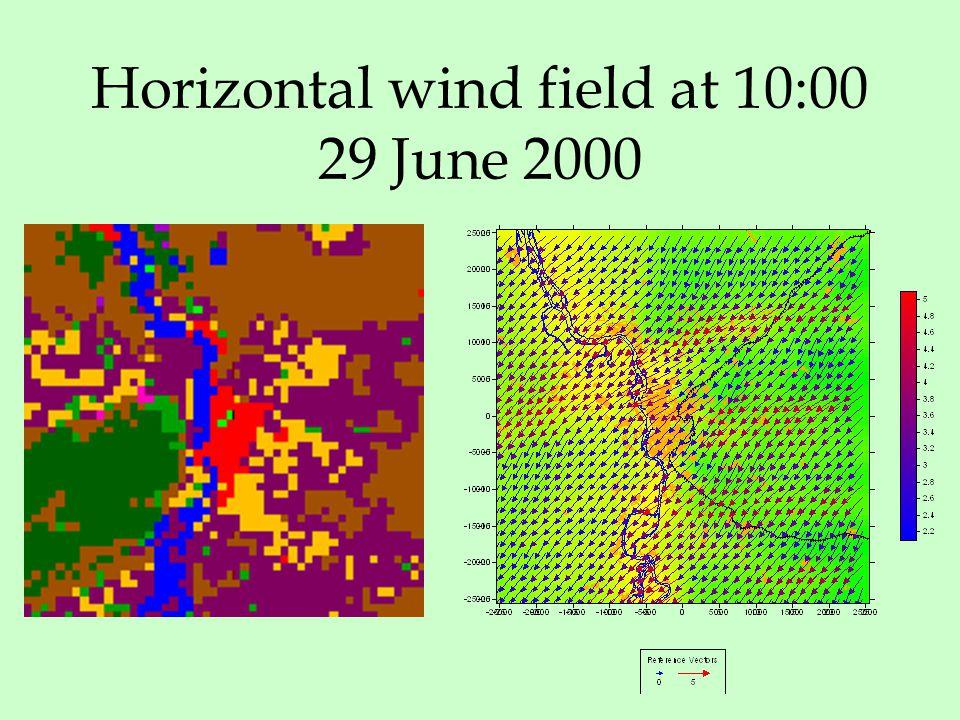 Horizontal wind field at 10:00 29 June 2000