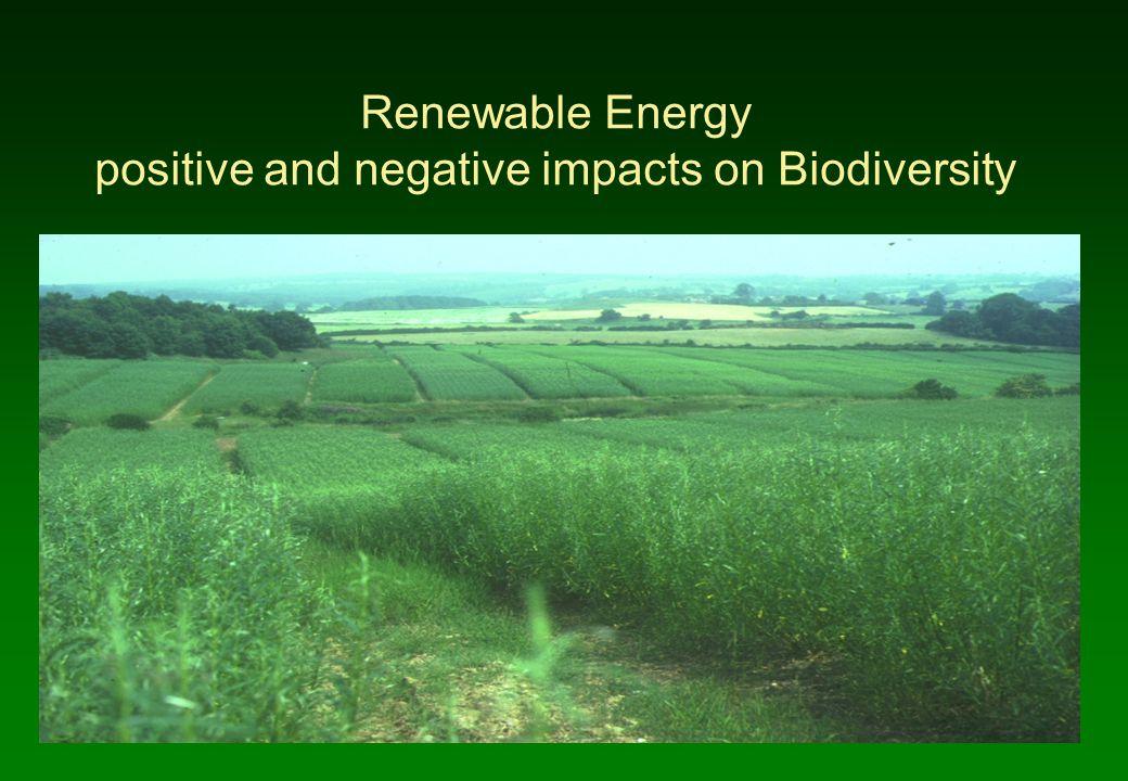 Renewable Energy positive and negative impacts on Biodiversity