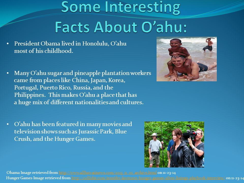 News Clip Studies have shown that approximately 2% of Hawaii's shoreline is eroding.